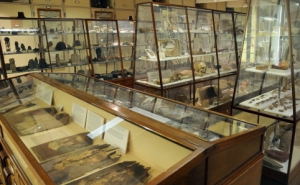 Inside the Petrie Museum, London.
