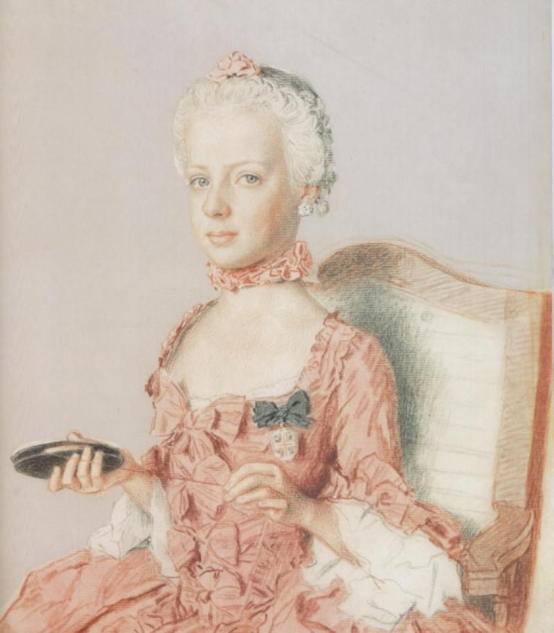 Billedresultat for marie antoinette pink dress portrait