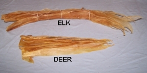 Deer sinews, used to make threads.