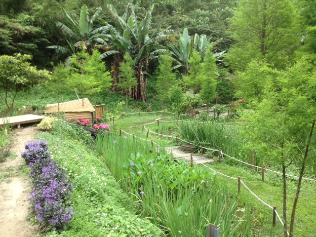 View of one of the gardens at the Zhuo Ye Cottage indigo dyeing centre, in Miaoli, Taiwan.